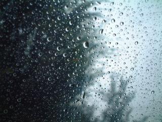 Rainyday_02