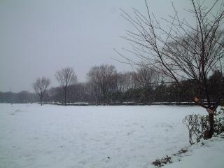 Snow_03_2