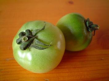 Green_tomato