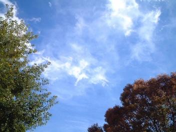 0811winter_sky_2