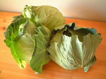 08cabbage