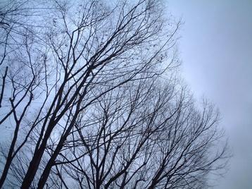09winter_sky