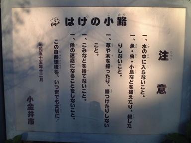 2009nogawa_09