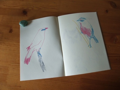 11the_bird_book02