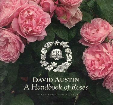 David_austin