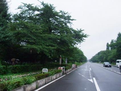 11kunitachi_01