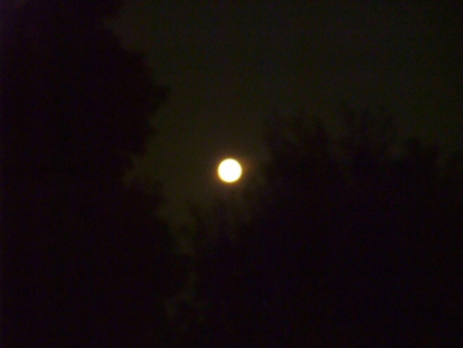 111012orange_moon