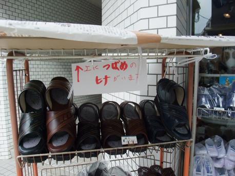 12tsubame_04