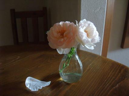 12english_roses_07