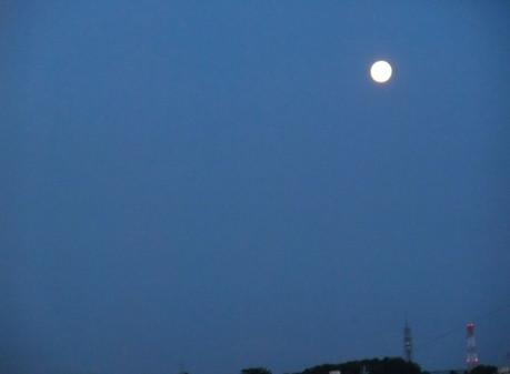 12blue_moon