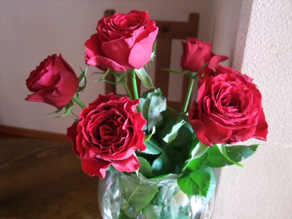 13red_roses