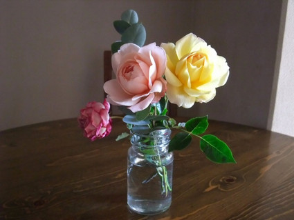 14winter_roses