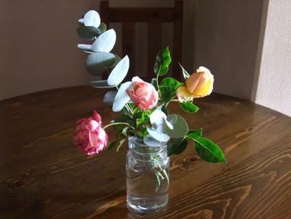 13winter_roses