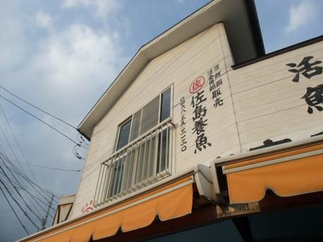 14sajima_05