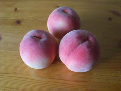 15_peach_01