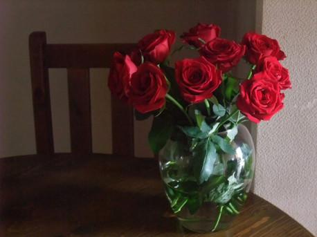 15crimson_roses