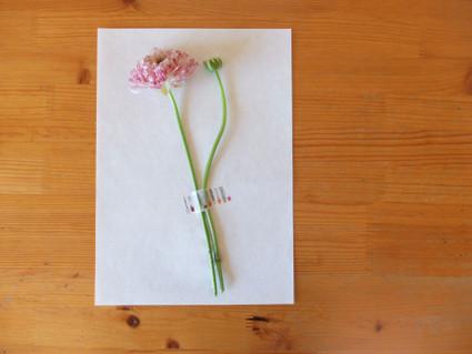 17pressed_flowers