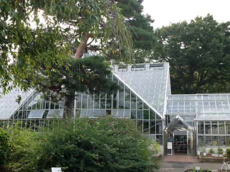 17herb_botanical_garden