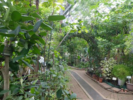 17herb_botanical_garden_02