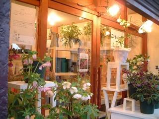 flower_shop_004