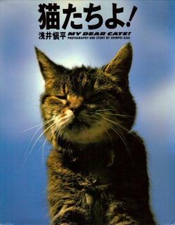 My_dear_cats_1