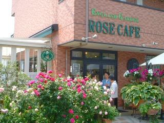 Rose_cafe_01