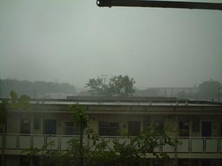 taifu