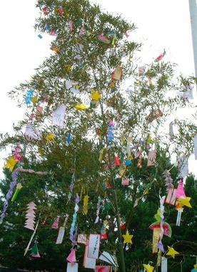 Tanabata_03